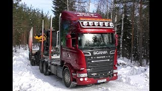 Scania R580 V8 6X4 Timber Truck Loading & Gets Unloaded