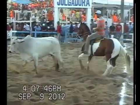final AMADOR na vaquejada do PARQUE MARIA DO CARMO BA 2012.09