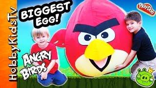 Worlds Biggest ANGRY BIRD Surprise Egg! Toys Inside Red Bird + Trash Pack, Star Wars HobbyKidsTV