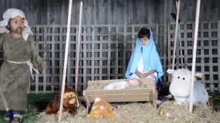 Nativity Story of Jesus Christ in Sinhala- Kids Drama