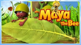 Maya the bee - Episode 42 - The birth of maya part I
