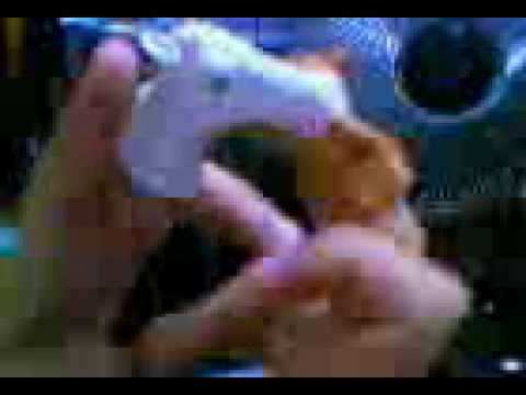 Xxx Mp4 Horse Scandal 3gp 3gp Sex