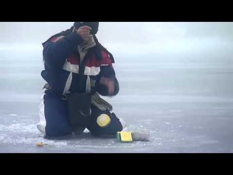 рыбалка с чемпионом станиславом