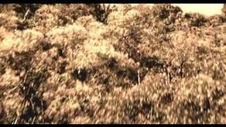 Darkness Falls (2003) Movie Trailer