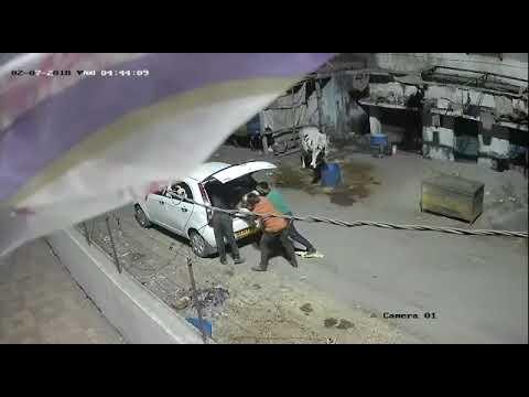 Xxx Mp4 Gj2livenews ગૌ માતાને કતલખાના માં મોકલવાના ખતરનાક ષડયંત્ર નો પર્દાફાશ કરતો વિડિયો 3gp Sex