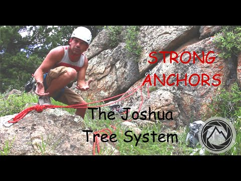 The Joshua Tree Top Rope System - AMGA TR Systems