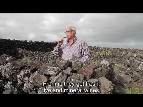 Vinhos dos Açores