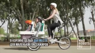 Семейная велоколяска Taga 2 0 Коляска + велосипед, вторая версия