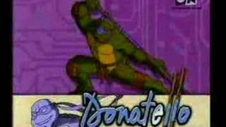 TMNT(starting song in hindi)