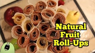 Raw & Natural FRUIT ROLL-UP Recipe