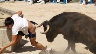 Funny Videos 2017 - Most funny videos ever seen in the world - Funny Videos 2017