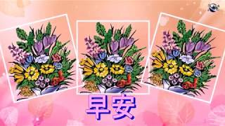 Chinese (Traditional) Language Good Morning Flowers greeting  video  for  everybody everyone