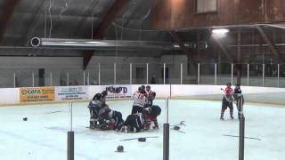Hockey ref punches player, trainer punches ref