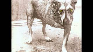 Alice In Chains - Alice In Chains (Full Album)