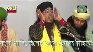 Maulana Jasim Uddin Mojahedi Saheb Shahi Darbar Sharif Sholabari