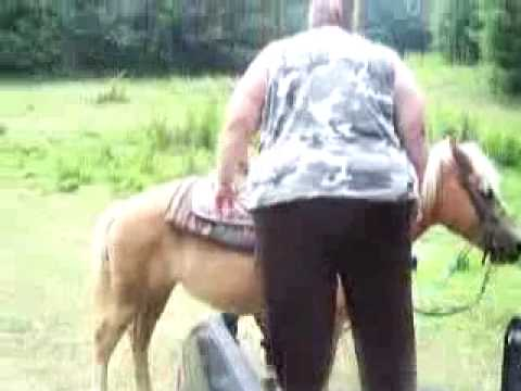 Xxx Mp4 Fat Woman Can T Get On Horse 3gp Sex