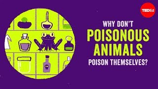 Why don't poisonous animals poison themselves? - Rebecca D. Tarvin