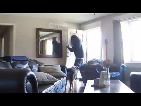 Livestream of home robbery leaves couple terrified