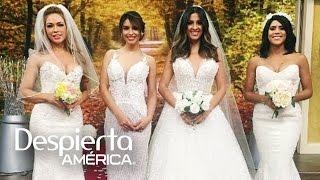 Las bellas de Despierta América lucieron sexys vestidos de novia