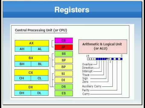 Assembly Language Tutorial #5 Registers