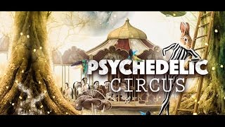 Protonica *Live* @ Psychedelic Circus 2016