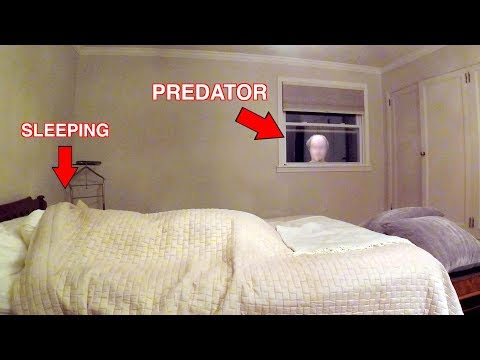 Xxx Mp4 Catching A Child Predator Predator Caught Watching Girl Sleep Social Experiment 3gp Sex