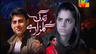 Zindagi gulzar hai episode 9 full HD Pakistani serial