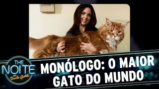 Monólogo: O maior gato do mundo | The Noite (23/05/17)