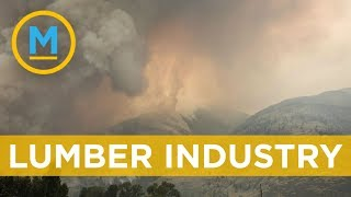 Wildfires in British Columbia are impacting lumber prices | Your Morning