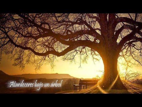 ♫Musica Cristiana para Retiro Espiritual ● Piano Istrumental para orar ● DRMCristiana