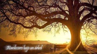 Música Cristiana para Retiro Espiritual ● Piano Istrumental para orar ●#DRMCristiana