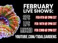 Download Video Download Tidal Gardens February 2019 Show #3 - Mix of everything (SPS, LPS, Zoas, etc.) 3GP MP4 FLV