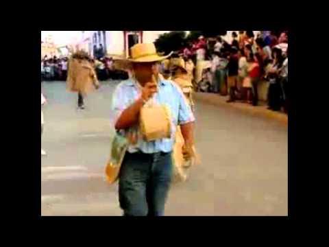 Fandango Tixtleco El Son de los Tlacololeros