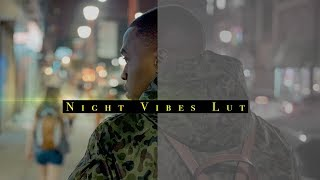 🌙 FREE LOW LIGHT NIGHT VIBES LUT | **FREE DOWNLOAD**