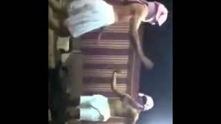 تقليد البنت الي ترقص وتقول الي مو عاجبه لا يناظر