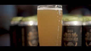 Tom & Dan BDM 24k Beer Release!