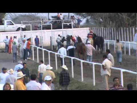 carrera caballos sin jinete