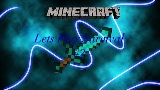 Minecraft Let's Play Survival #2
