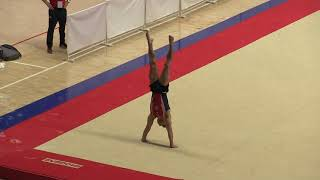 Sam Mikulak - Floor Exericse - Team/AA - 2018 Pacific Rim Championships