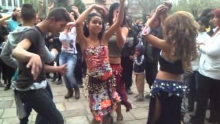 Romski praznik 2015