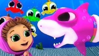 Baby Shark | Best 20 Minutes of Kids Songs