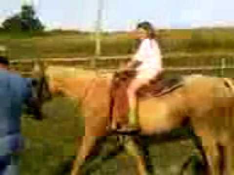 Xxx Mp4 Kylee Riding Horse 3gp 3gp Sex