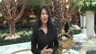 REMIX Old Bangla Song CHITHI DIO Singer  Annie Jilani Low