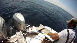 2016 Shark Fishing - El Cid III - South Jersey (View in 720p)