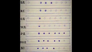 Online Bansuri / Flute Lesson - Beginner's How to play sa re ga ma flute LessonsFor Beginner