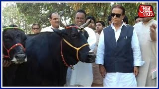 India 360: Azam Khan Returned A Pair Of Cows Presented to Him By Goverdhan Seer