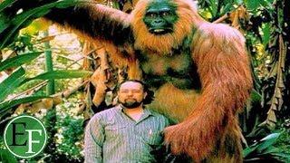 اضخم مخلوقات العالم عبرة كافة العصور، ستجعلك غير قادر على الكلام !