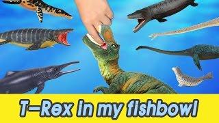 [EN] #54 Let's raise T-rex in my fishbowl! kids education, Dinosaurs animationㅣCoCosToy