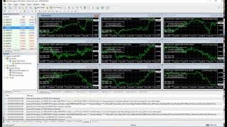 How to download and install Dynamic Pro Scalper forex robot
