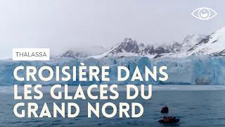 Polar Front, l'appel des glaces - Thalassa (reportage complet)